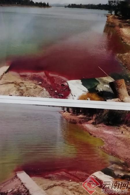 """竟把50吨""""废醇""""排入湖中! 云南安宁法院开庭审理一起污染环境案"""
