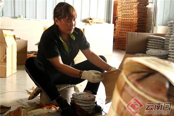致富不忘众乡亲 云南宁洱这个小伙带动30户贫困户增收